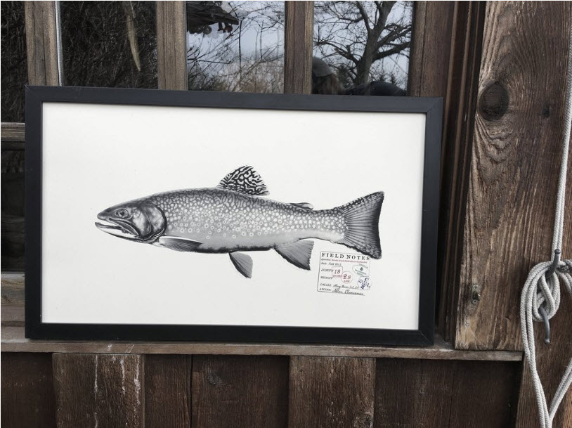 The Catch and Release Print Shop